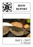 Titelseite BSSW-Report 3-2007