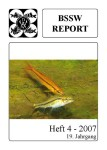Titelseite BSSW-Report 4-2007