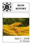 Titelseite BSSW-Report 3-2008
