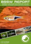 Titelseite BSSW-Report 4-2020: Trigonostigma truncata - Andreas TANKE