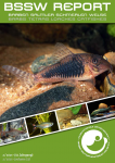 Titelseite BSSW-Report 2-2021: Corydoras fulleri, benannt nach Ian Fuller - Ingo SEIDEL